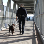 Image of Officer Chan with K-9 Officer Kona